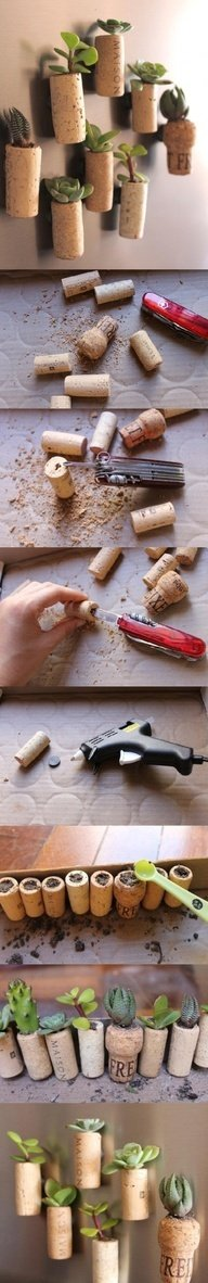 Cork Planters DIY: Hollow them out and plant. For some awesome fridge decorations just glue a magnet to them or simply stick them to whatever surface you want to hang them on.